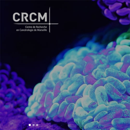 Cancer Research Center of Marseille (CRCM)