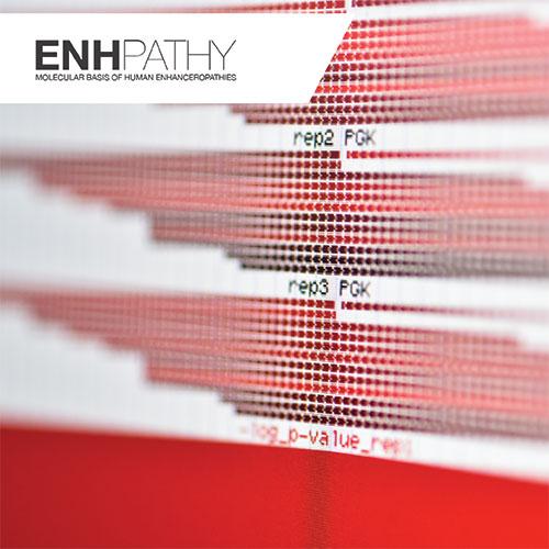 ENHPATHY Innovative Training Network (ITN)